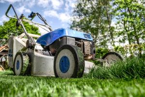 Teria Services-tonte de pelouses à domicile